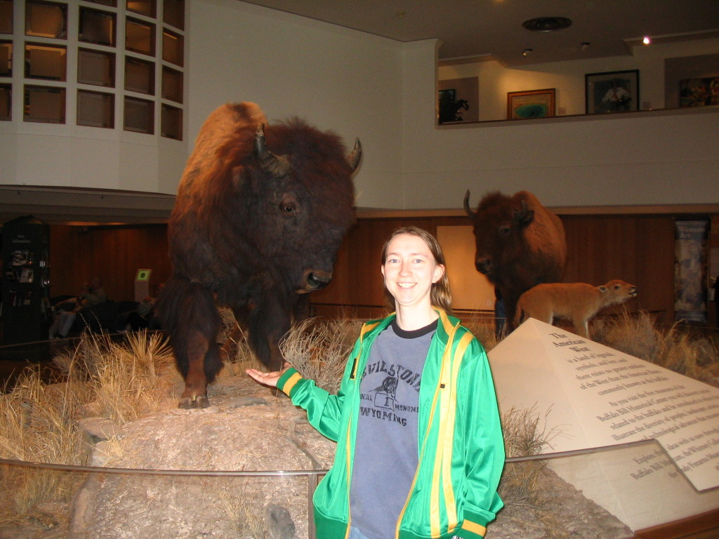Display of buffalo