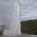 Old Faithful in Yellowstone National Park