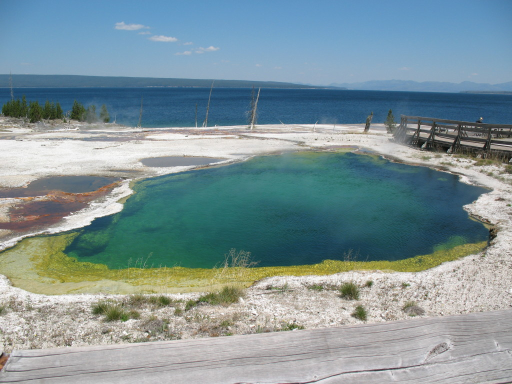 A pool of water in Yellowstone National Park