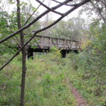 A bridge in Afton State Park