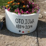 Oto Days Oct 2014 flowers