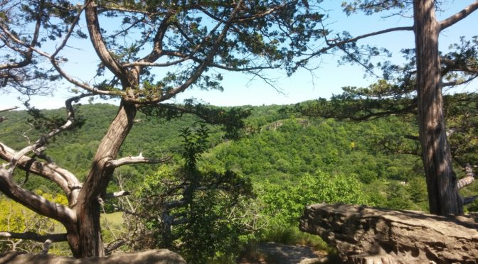 Whitewater State Park, Altura, MN | Dilettante Requiem of Chaos